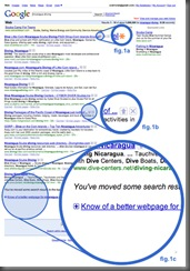 Google Experimental Search